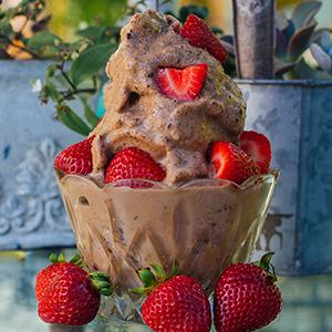 No-Churn Chocolate Peanut Butter Shakeology Ice Cream