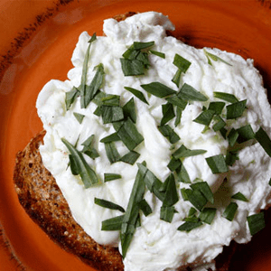 herbed-poached-egg-whites-on-wheat